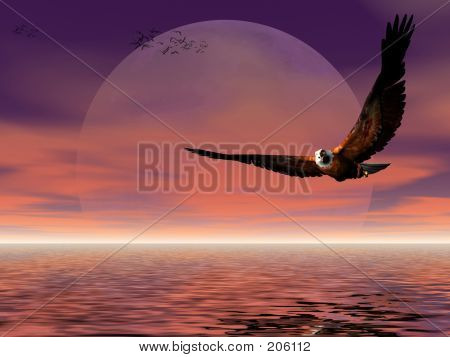 Moon Rise With Eagle.