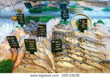 BUSAN, SOUTH KOREA - MAY 28, 2017: fish on display at Super Market at Lotte Department Store in Busan.