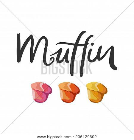 Muffin illustration for menu, cards, patterns, wallpaper. Muffin hand drawn  logo