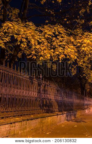 Night view of illuminated ornamental fence and autumn trees of Yusupov Garden Saint Petersburg Russia