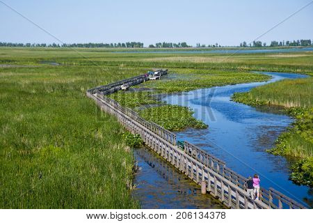 View of the boardwalk along Point Pelee provincial park during the summer in southwestern Ontario, Canada