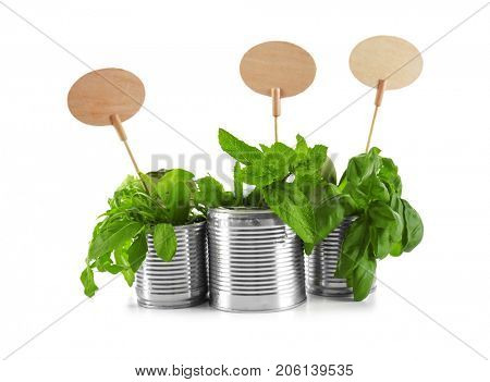 Young plants with nameplates in tin cans isolated on white. Recycling garbage concept