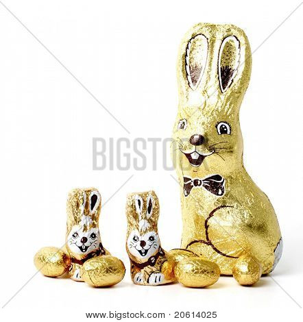 Easter chocolate rabbit - bunny