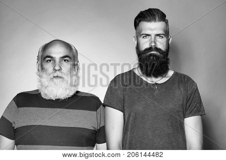 Old and young bearded men with long beard white and brown in studio on grey background