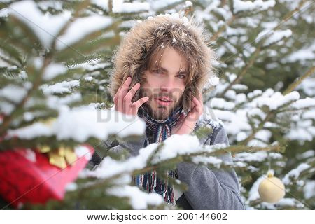 Guy On Fir Trees On Snowy Nature