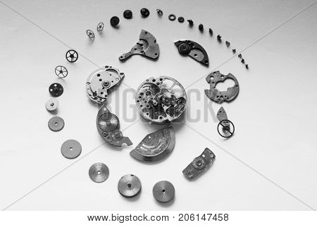 Dismantled Mechanical Watch