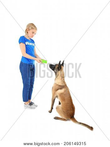 Young female volunteer feeding dog, isolated on white. Concept of volunteering and animal shelters