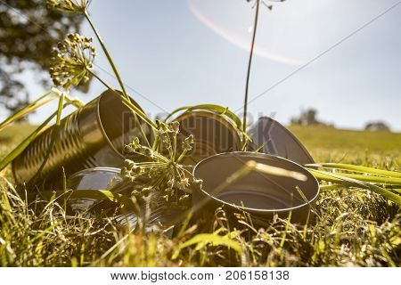 Close Up Of Tin Cans In Weeds On Sunny Day