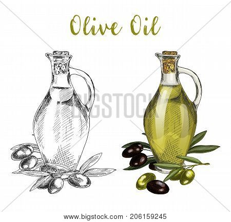 Glassware container or bulb, jar or bottle of olive oil near branch with leaves and berries. Sketch of healthy vegan or vegetarian drink product. Natural nutrition and organic cuisine, food theme