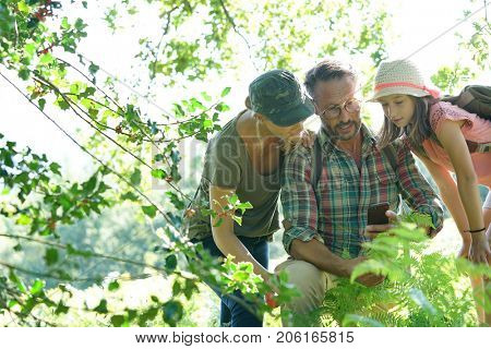 Family on rambling day looking at forest plants and trees