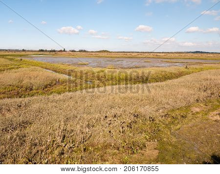 Landscape Scene View Grassland Outside Marsh Land