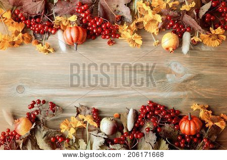 Fall background. Seasonal fall nature berries pumpkins apples and fall flowers on the wooden background. Fall still life with free space. Fall background. Fall composition