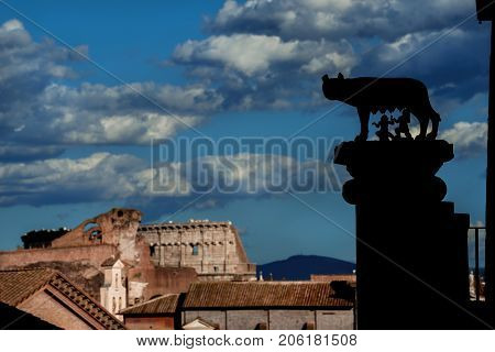 Capitoline Wolf column silhouette and view of Roman Forum with Coliseum