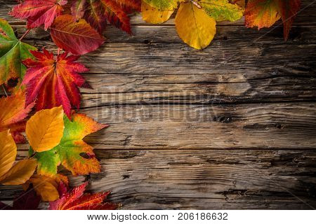 Colorful autumn leaves on old rustic wooden background.