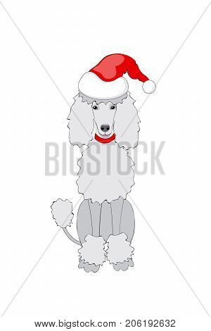 New year card with cartoon drawn pretty poodle with santa hat. Symbol year 2018 of dog. Isolated on the white background. eps 10
