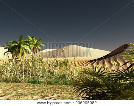 African savannah with lavish and radiant vegetation 3d rendering