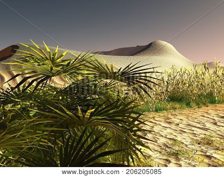 African desert with lavish and lively plants 3d rendering