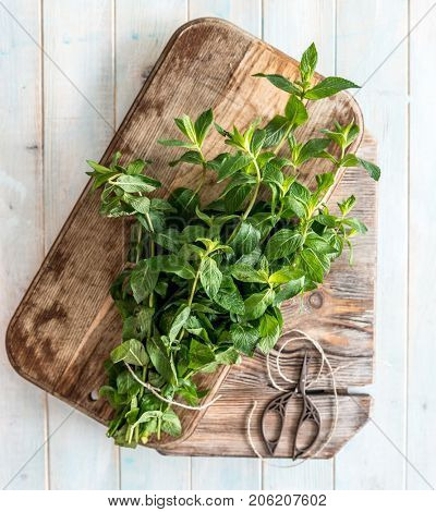 Rustic cutting board with leaves of mint, topview