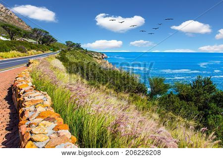 Place where two oceans meet. Triangular flock of migratory birds over the surf. Mysterious South Africa. The concept of extreme and exotic tourism