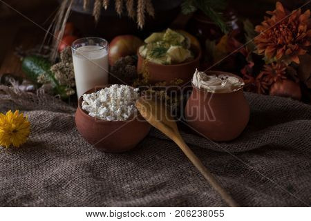 Organic domestic food: milk cottage cheese sour cream boiled potato and vegetables in vintage dish on rustic background