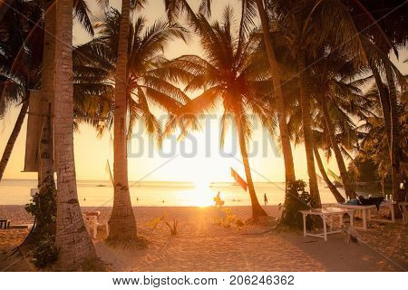 Palm trees during sunset on White beach. Boracay island . Philiphines.