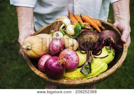 Hands holding basket of mixed veggie produce from farm