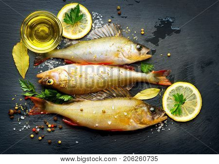 Fresh fish with aromatic herbs, spices, salt. Raw perch fish on slate tray dark vintage background, top view, preparing healthy food, cooking, diet, nutrition concept.