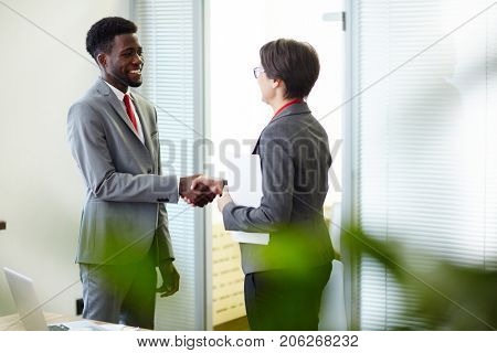 Profile view of smiling business partners in formalwear shaking hands while standing at spacious boardroom and finishing up negotiations