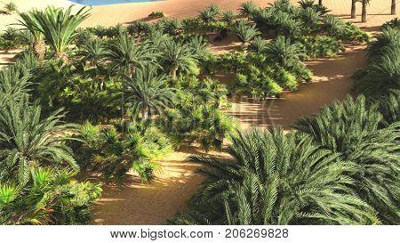 Great point of view on Sahara desert at sundown 3d rendering