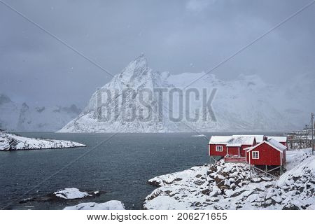 Red rorbu houses of Hamnoy fishing village on Lofoten Islands, Norway in snowfall in winter