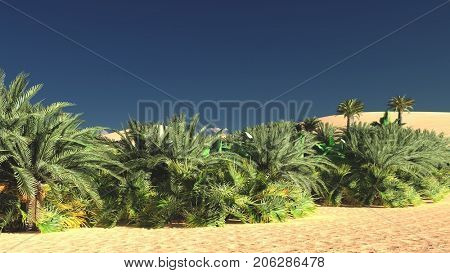Rich exotic plant life on desert later in the day, 3d rendering