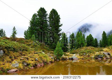 Small lake in Lagorai mountain.Val di Fiemme, Italy