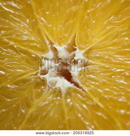 Closeup of fresh orange slice