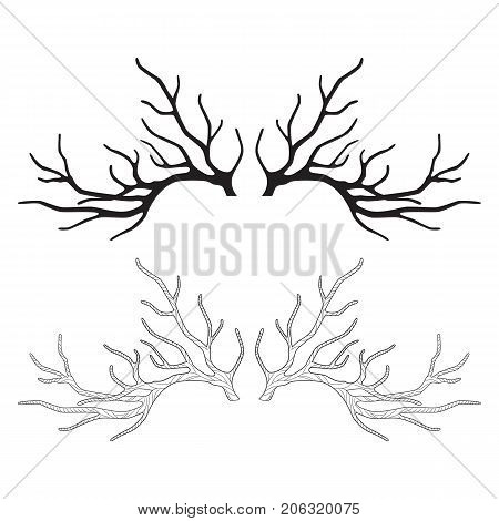 Deer antlers for your design horns graphic silhouette vector illustration