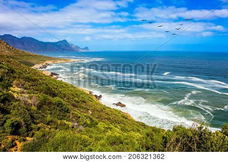 Triangular flock of migratory birds over the surf. Place where two oceans meet. Journey to the southern edge of the world. Mysterious South Africa. The concept of extreme and exotic tourism