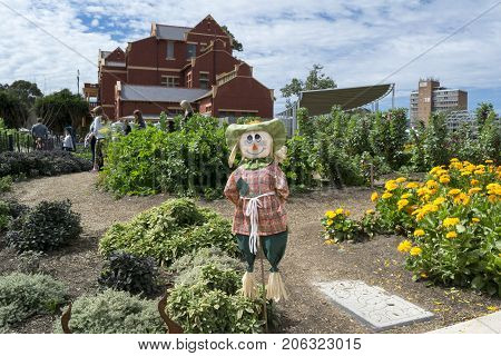 Scarecrow And Visitors In The Kitchen Garden, Adelaide Botanic Garden