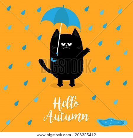 Hello autumn. Black cat holding blue umbrella. Rain drops puddle. Angry sad emotion. Hate fall. Cute funny cartoon baby character. Pet animal collection Orange background Isolated Vector illustration