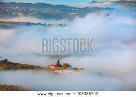View from above on autumnal vineyards and morning fog covering hills of Piedmont, Northern Italy.