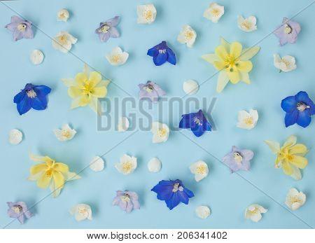 Floral pastel background. Garden flowers pattern texture.