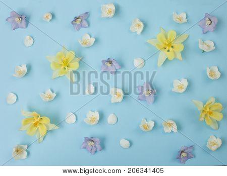 Floral pastel background. Garden flowers pattern texture on blue.