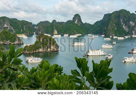 Aerial View Of Cruise Boats In Halong Bay