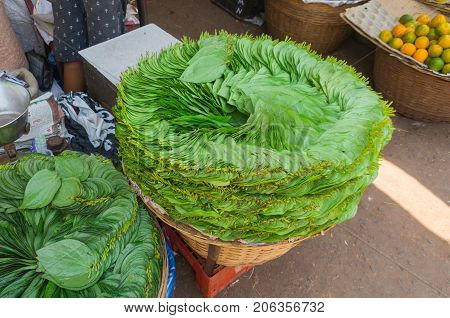 Leaves Of Betel On The Market In Goa