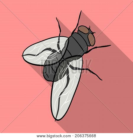 The fly is ordinary.Dipterous insect fly single icon in flat style vector symbol stock isometric illustration .
