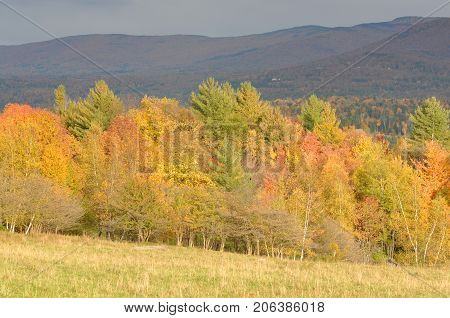 Vermont Fall Foliage, Mount Mansfield in the background, Vermont, USA.