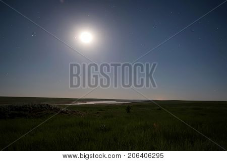 Scenic might landscape of wild summer steppe and moonlight