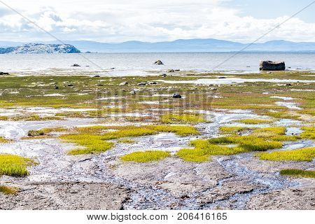 Saint Lawrence River Beach In Kamouraska, Quebec, Canada With Grass, Shallow Water And Puddles, And