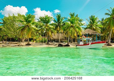 Exotic coast of Dominican Republic with high palms, colorful boats and azure water, Dominican Republic, Caribbean Islands, Central America