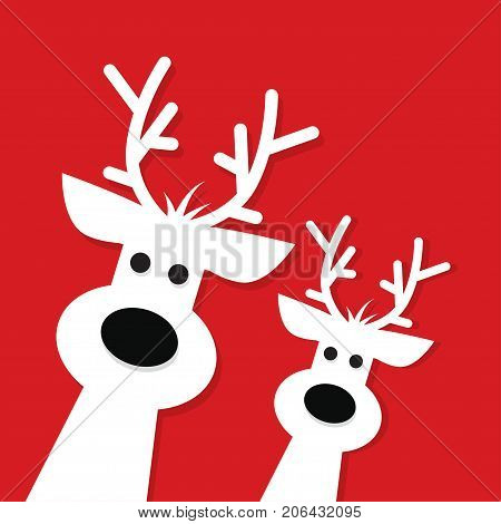 Two white Christmas Reindeer on a red background vector illustration