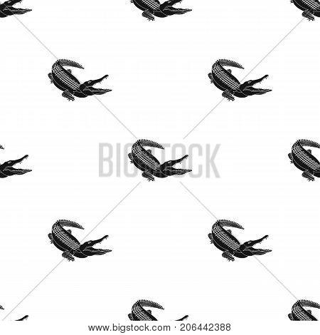 Crocodile, dangerous predator. Reptile, Nile crocodile single icon in black style vector symbol stock illustration .