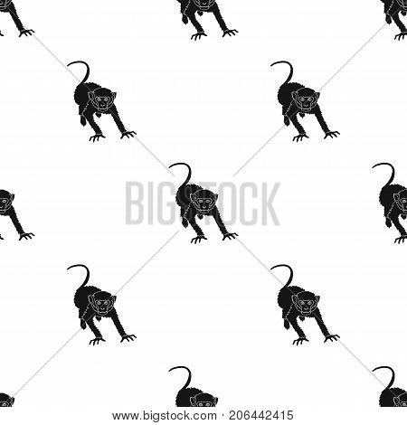 Monkey, wild animal of the jungle. Monkey, mammal primate single icon in black style vector symbol stock illustration .
